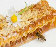 Цветочный мед для потенции